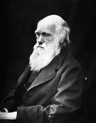 Charles Darwin: Survival of the fittest